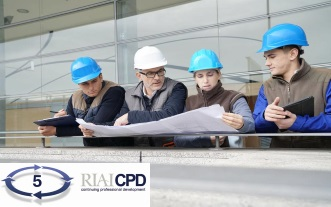 Pre-recorded Online: RIAI CPD on How to Carry Out a Site Inspection