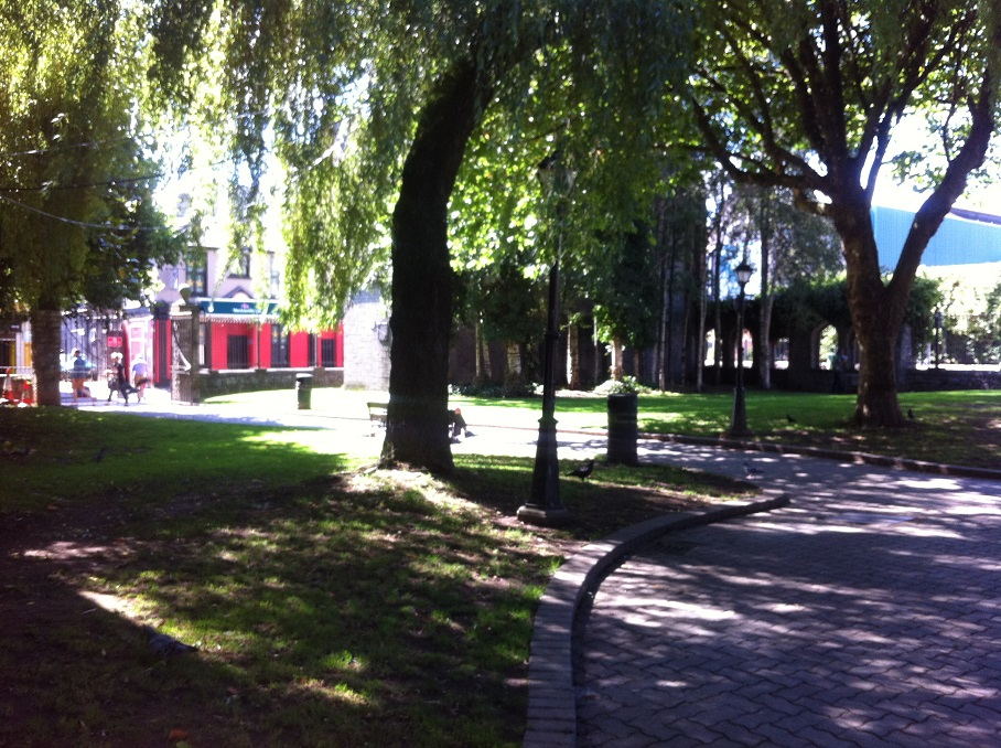 Bishop Lucey Park Redevelopment